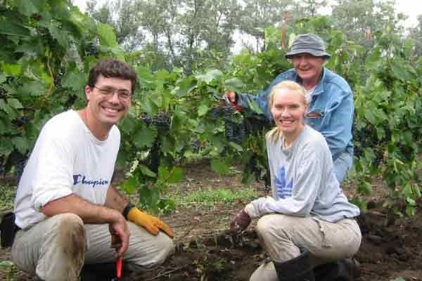 Matt, Sandi, and Ralph picking grapes in the early days of Prairie Berry Winery